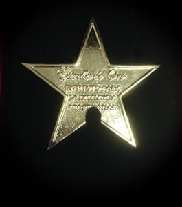 estrellaweb